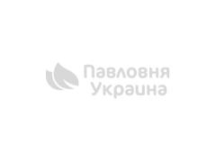 Закваски и соления в дубовых кадках - преимущества бондарных изделий